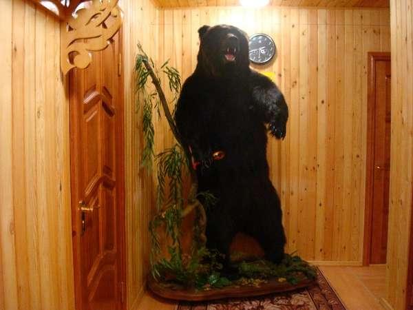 Три медведя - В холле 2-этажного большого дома.